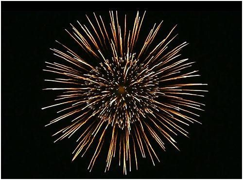 Feuerwerk Glauchau, Hochzeitsfeuerwerk Glauchau, Geburtstagsfeuerwerk Glauchau