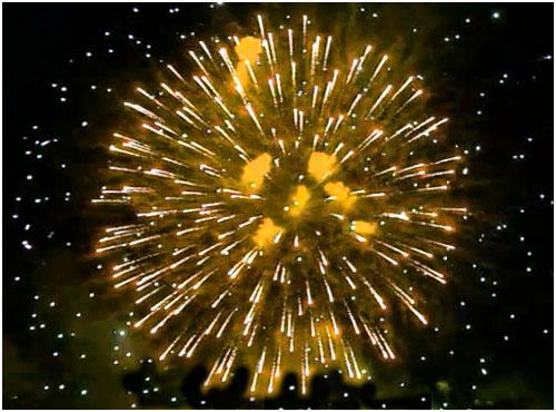Feuerwerk Gefell, Hochzeitsfeuerwerk Gefell, Geburtstagsfeuerwerk Gefell