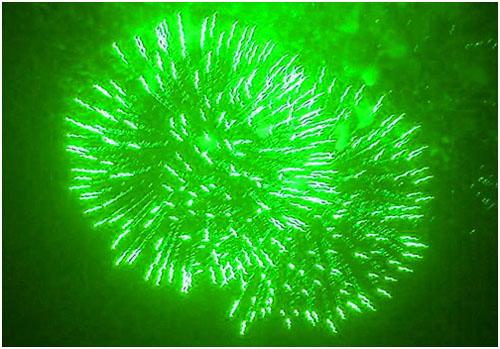 Feuerwerk Greiz, Hochzeitsfeuerwerk Greiz, Geburtstagsfeuerwerk Greiz