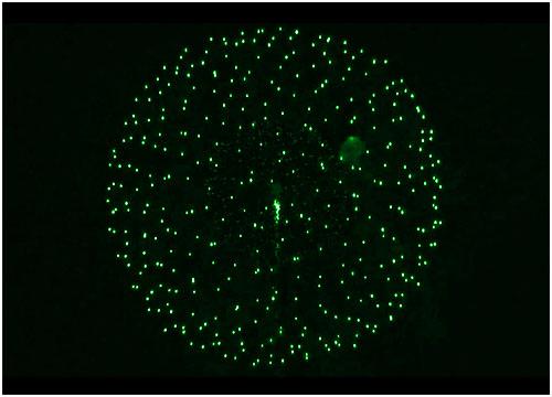 Feuerwerk Meiningen, Hochzeitsfeuerwerk Meiningen, Geburtstagsfeuerwerk Meiningen
