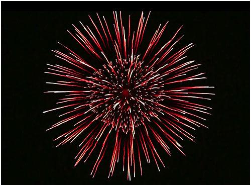 Feuerwerk Saalburg, Hochzeitsfeuerwerk Saalburg, Geburtstagsfeuerwerk Saalburg
