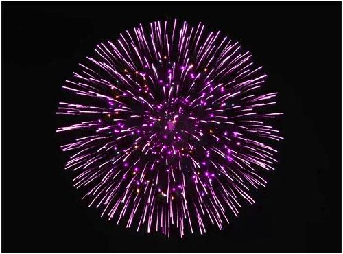 Feuerwerk Netzschkau, Hochzeitsfeuerwerk Netzschkau, Geburtstagsfeuerwerk Netzschkau