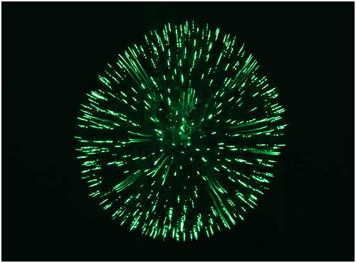 Feuerwerk Reichenbach, Hochzeitsfeuerwerk Reichenbach, Geburtstagsfeuerwerk Reichenbach