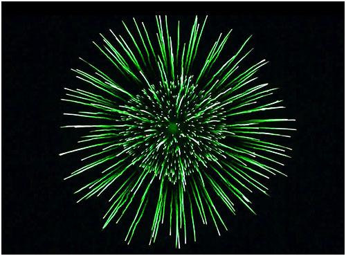 Feuerwerk Reuth, Hochzeitsfeuerwerk Reuth, Geburtstagsfeuerwerk Reuth